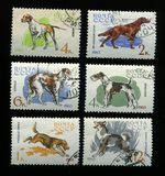 Hunter dogs on USSR stamps Stock Photo