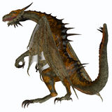 Hunter Dragon. A creature of myth and fantasy the dragon is a fierce flying monster with horns and large teeth Royalty Free Stock Images