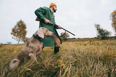 Hunter going with gun and dog. Bottom view hunter going with a gun and dog in a field stock photo
