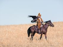 Hunter with a golden eagle. Dried up hill. stock photography