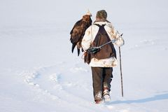 Hunter with golden eagles on hand. - Image stock photography