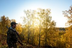 Hunter at dawn. A hunter with a gun in the forest at dawn Royalty Free Stock Image