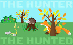 The hunter or the hunted. Mouse, hedgehog, fox. The hunter or the hunted. Food chain in a wild life. Mouse, hedgehog, fox Royalty Free Stock Images