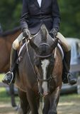 Hunter/Jumper Classic Cleveland, Ohio USA Royalty Free Stock Images