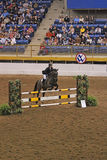 Hunter Jumper Grand Stakes Royalty-vrije Stock Foto