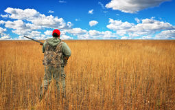 Hunter moving with shotgun, looking for prey in the field. Royalty Free Stock Images