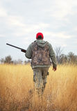 Hunter moving with shotgun looking for prey. Stock Photography