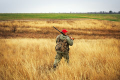 Hunter moving with shotgun looking for prey. Royalty Free Stock Photo