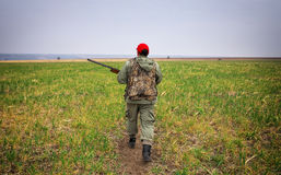 Hunter moving with shotgun looking for prey. Royalty Free Stock Image