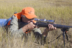 Hunter In Prone Shooting Position. A big game hunter with rifle up to his shoulder to shoot from a prone position Stock Images