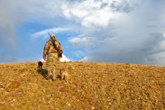 Camouflaged hunter and dogs in sunrise landscape. A hunter with rifle and camouflage clothing hikes up an arid hill with two dogs in golden sunrise light while Stock Image