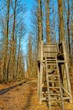 Hunter`s stand in the autumn forest Stock Photography