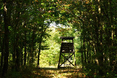 Hunter's stand in the forest Stock Photography