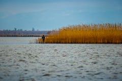 Hunter silhouette at sunrise, while hunting on the lake Paliasto Stock Image