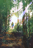 Hunter standing on a path in forest. Hunter holding a gun standing on a path in summer forest,digital painting Royalty Free Stock Image