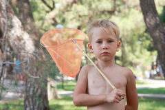 Hunter to the butterflies! Royalty Free Stock Image
