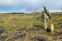 Hunter and tracking dog hiking on wild plain. A camouflaged coyote hunter with a rifle and red heeler tracking dog, hiking across a semi arid landscape in Stock Image