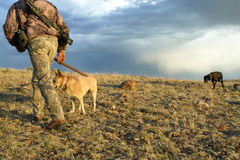 Hunter and tracking dogs hiking in desert scene. A camouflaged hunter with rifle and tracking dogs, hiking in an arid desert landscape under a stormy morning sky Stock Photos