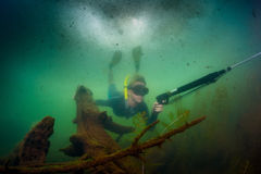 Hunter. Underwater shot of the hunter diving with speargun in the lake with poor visibility Stock Photo