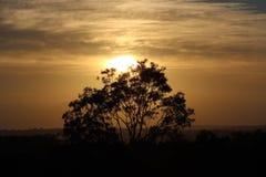 Hunter Valley, Australia, Sunrise Stock Photo