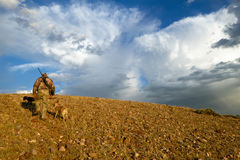 Hunter walking through field with dog for hunting. Hunter carrying rifle walking along dirt road through field with dog for coyote hunting, Southwest Wyoming Stock Photos