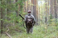 Hunter in the woods. Hunter in hunting camouflage with shotgun walking in the forest in autumn Royalty Free Stock Photos