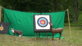 Hunters Arrow hit goal ring in archery target stock video