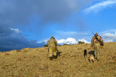 Hunters with dogs walking for hunting. Two hunters in camouflage walking with dogs for coyote hunting, Southwest Wyoming, USA Royalty Free Stock Photo