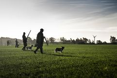 Hunters with hunting dogs walk through field. Windmill Stock Photo