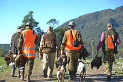 The hunters return. A group of friends return from their pheasant hunt with plenty of game on the West Coast of New Zealand Royalty Free Stock Photos