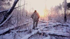 Hunters in the Woods. Armed Rangers in winter forest.  stock video footage