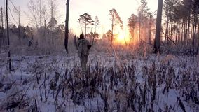 Hunters in the Woods. Armed Rangers in winter forest stock video