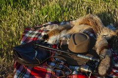 Hunting bag, hat and leather of stuffed foxes. Hunting bag, hat and skin from the prepared fox placed on a blanket on a green lawn stock images