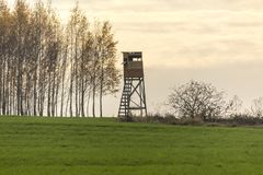Early morning. Wooden hunting tower on the edge of the field. stock photo