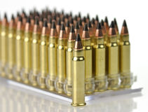 Hunting bullets Royalty Free Stock Photography