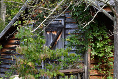 Hunting cabin Royalty Free Stock Photography