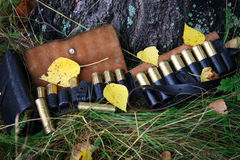 Hunting cartridges covered leaf Royalty Free Stock Image