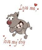 The hunting dog boxer postcard Stock Image