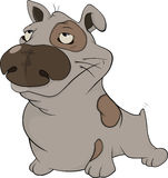 The hunting dog. Cartoon Royalty Free Stock Photography
