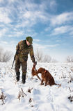 Hunting dog fetching the pheasant  to the hunter Royalty Free Stock Photo