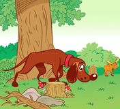 Hunting dog in the forest. The illustration shows how a hunting dog runs on the trail of elk in the background the forest. Illustration done in cartoon style on Royalty Free Stock Image