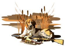 Hunting dog. (Vector). Vector image hunting dogs. Additional format: made in CorelDRAW X13. Color settings: Tools/color management/Optimized for the Web royalty free illustration