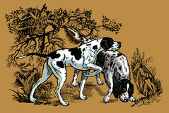 Hunting dogs in forest illustration Royalty Free Stock Photos