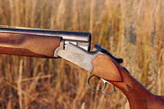 Hunting double-barrelled gun Stock Photography