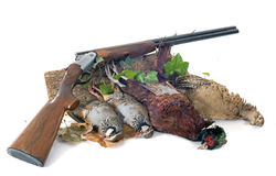Hunting games stock photos