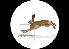 Hunting hares. Running hare in the grid optical sight hunting rifles Stock Images