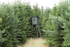 Hunting hide. High hunting hide against trees Stock Photo