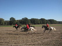 Hunting with horses. Stock Photo