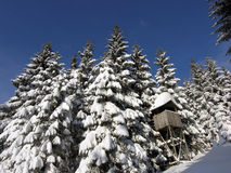 Hunting hut in winter forest royalty free stock photo