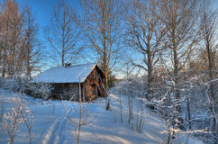 Hunting hut in winter forest Stock Photography